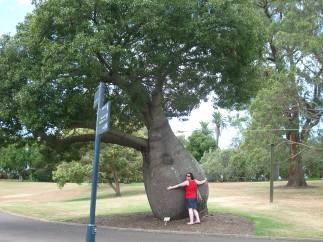 in den Royal Botanic Gardens
