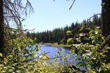 10 - Alice Lake