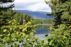 11 - Alice Lake