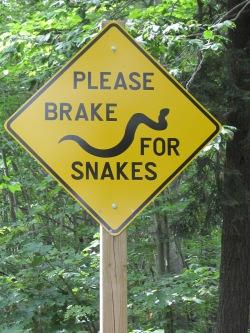 22 - sign break 4 snakes