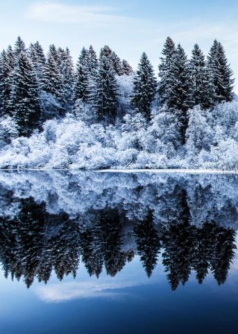http://wnderlst.tumblr.com/post/70155539666/winter-in-norway