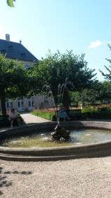 Rosengarten VI