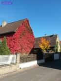 Tolle Herbstfarben <3