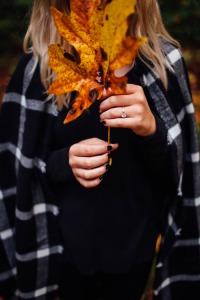 fav autumn pic 12.15