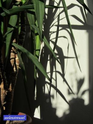 Schatten im Schlafzimmer.