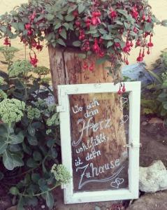 fav garden I 08.16